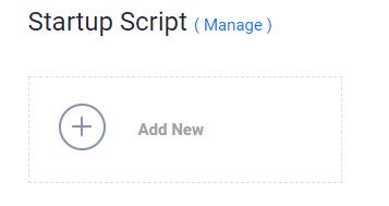 startup script